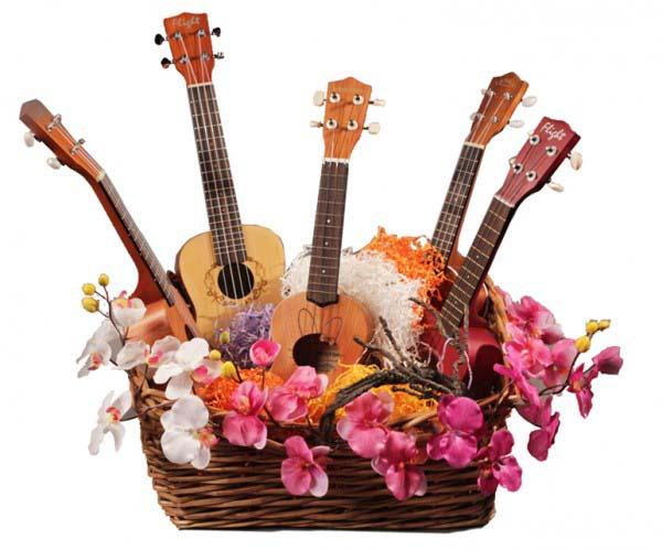 Подарки для гитариста на день рождения 469